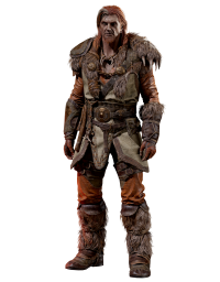 Друид Diablo 2 Resurrected